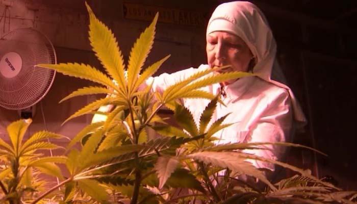 Nuns in Merced defend their medical Marijuana business