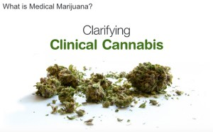 Clarifying Cannabis