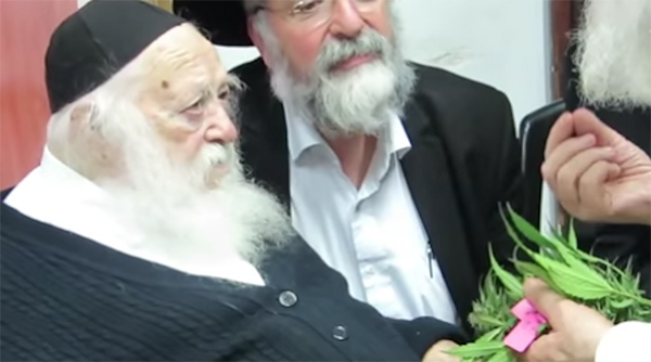 Some Rabbi's May Be Okay With Medical Marijuana; But Only If It's Kosher